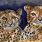 Cheetahs by Elizabeth Kendall