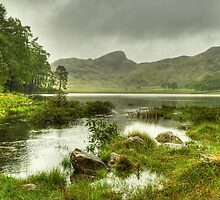 The Colours Of Blea Tarn...May by Jamie  Green