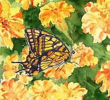 Eastern Tiger Buterfly & Fancy Marigolds by M Diana Heater