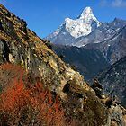 Ama Dablam Beauty by Harry Oldmeadow