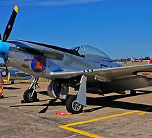 P-51D Mustang  by Tim Pruyn