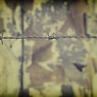 Barbwire fence by fred113