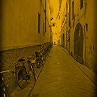 Bikes in Rome by fred113