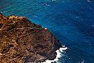 Makapu'u Lighthouse by Alex Preiss