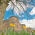 Skipton Castle by Stephen Knowles
