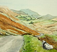 Kirkstone Pass - Scotland by Lynne  Kirby