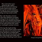 Poetry in Art - Winds of Fire by Robin Monroe