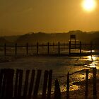 Winter sun on Dawlish Warren  by Colin Munro