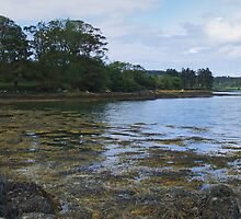 Tranquility at Sheephaven by WatscapePhoto