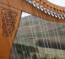 The Megget Valley - through the strings of a Clarsach by wjohnd