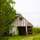 TEENY WEENY OLD BARN by Pauline Evans