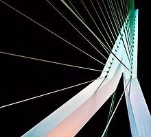 The Erasmus Bridge by strok