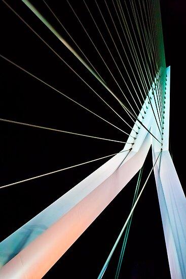 The Erasmus Bridge by strok