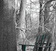 quiet times in selective colour by Tamgail