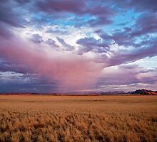 Ghost Rain Over the Desert by Jill Fisher