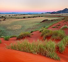 Sand Dunes and Mountains at Dusk by Jill Fisher