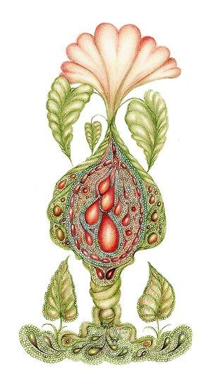 Grow by Helena Wilsen - Saunders