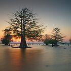 Sunken Island, Sunken Sun #2 by Troy Dalmasso
