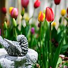 A Bird And A Tulip by Diego  Re