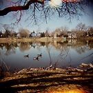 A Serene Afternoon by BaVincio