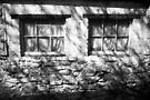 The Witches Window under the Cold Fingers of Shadows BW by Andy Freer
