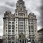 Liver Building - Liverpool, UK by paulsk