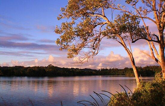 tweed river... by gail woodbury