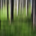 Forest Abstract 1 by Giles McGarry