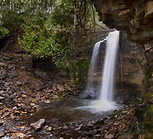 Hilton Falls by Robin Webster