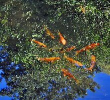 Swimming In The Trees by Margaret Stevens