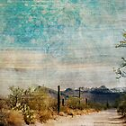 Saguaro West textured by lesanchez
