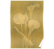 Arum Lilies  2000 Poster