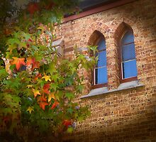Window to a colourful world by Michael Matthews