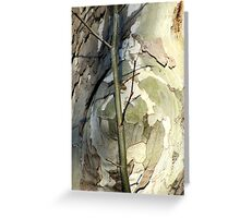 Sycamore sprout Greeting Card