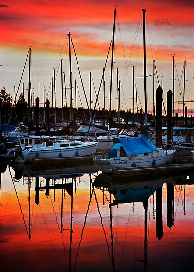 Swantown Sunset by Lynnette Peizer