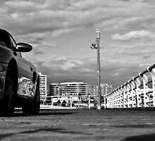 Privilege Parking by Uri Z. Fogel