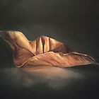 Autumn Leaf by Fannyja