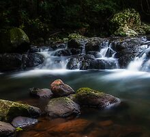 Up the Creek by D Byrne