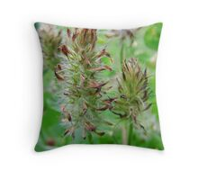 Crimson Clover Gone To  Seed Throw Pillow