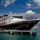 MS Disney Magic by iamwiley