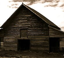 Crow Barn in B&W by Lisa Taylor