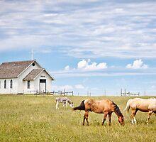 Town 1880, South Dakota by Roma Czulowska
