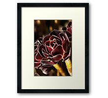 Rich & Golden Framed Print