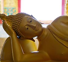 Buddha reclining by AHigginsPhoto