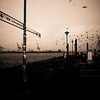 Hamburg Harbour District by strok