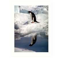 Adelie Penguin in a Reflective Mood Art Print