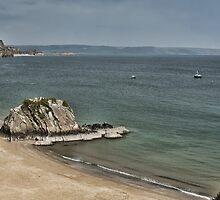 Goscar Rock North Beach Tenby Pembrokeshire by Steve Purnell