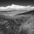 Antelope Valley, looking toward the Tehachapis by John Wright