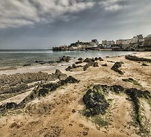 Tenby Harbour North Beach View 6 by Steve Purnell
