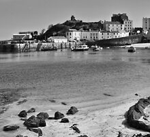 Tenby Harbour North Beach View Mono by Steve Purnell